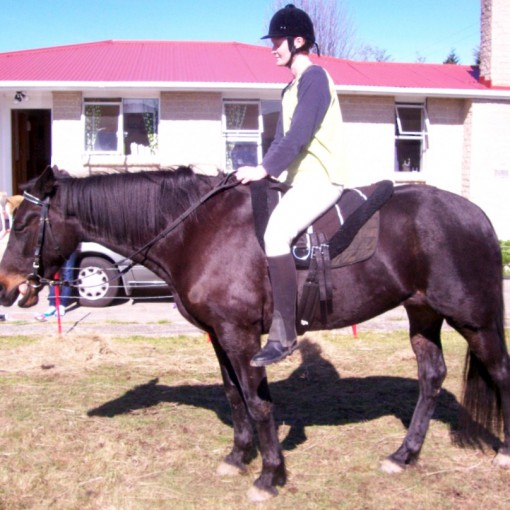 Bare Back Riding Pad In Use