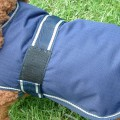 Dog Jacket Water Proof Small
