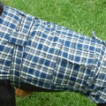 Dog Jacket Cotswoll Medium 45 Blue/Black