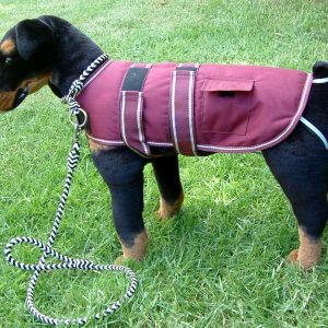 Dog Jacket Waterproof Medium