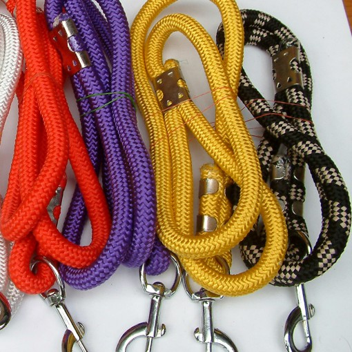 Dog Lead Braided PP