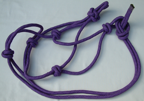 DSCF0015a (15).jpg halter lavender