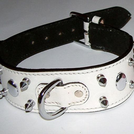 Dog Collar 2 inch