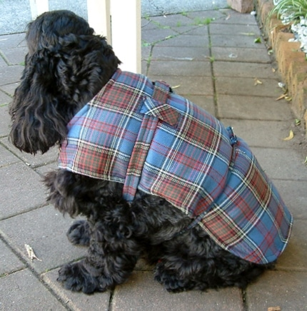 Dog Jacket Cotswool Medium