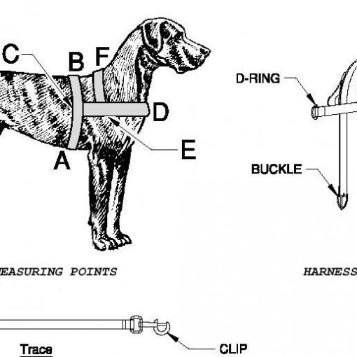 Dog Carting Harness Mesurements
