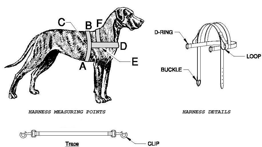 dog harness carting  drafting leather