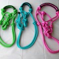 Horse Rope Halters