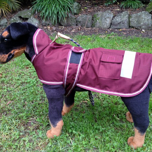 Dog Jacket Waterproof X-Medium Hooded