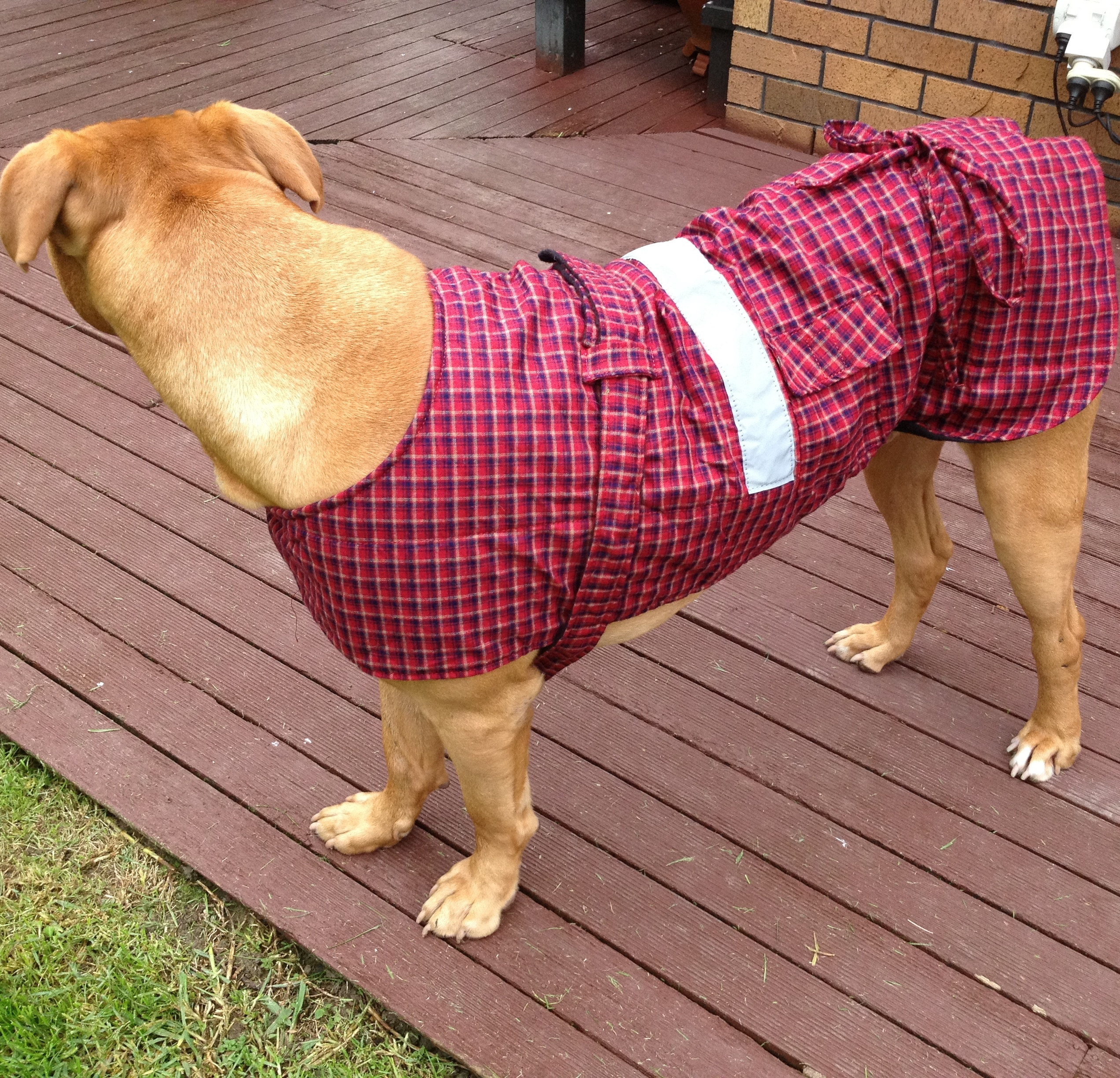 Dog Jacket Cotswool Xl Petlovers Nz Ltd