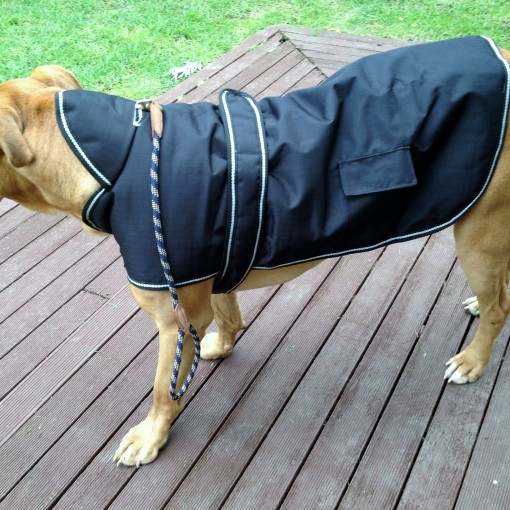 Dog Jacket Waterproof Hooded Large
