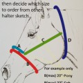 Horse Halter Sizing