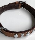 Dog Collar Flat Shiny Stud