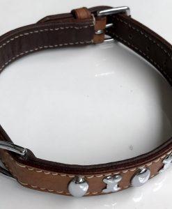 Dog Collar Flat Shiny Stud