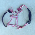 Horse Halters Padded