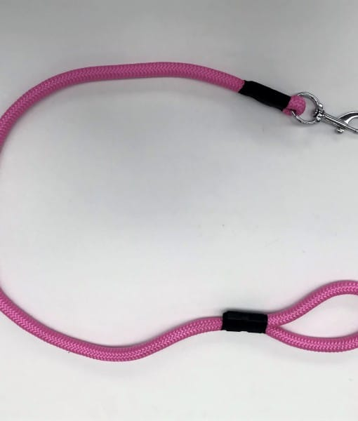 Dog Lead PP