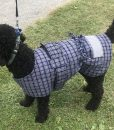 Cotswool Dog Jacket 35cm