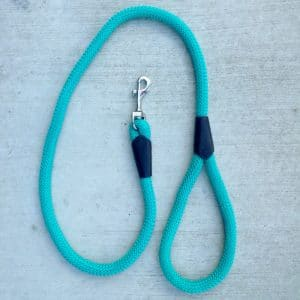 Dog Lead Soft