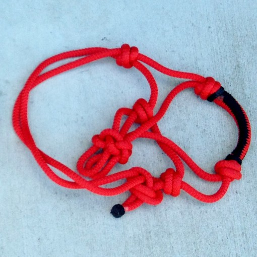 Mini Horse Rope Halter Red