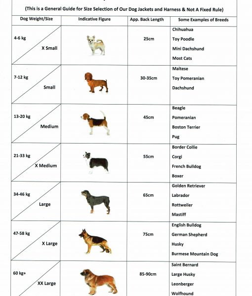 Dog Size Guide